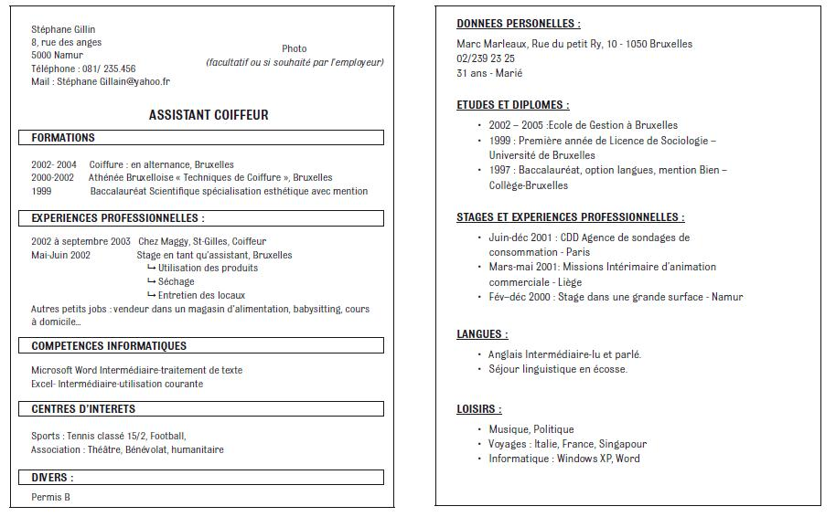 resume format  pr u00e9sentation cv open office